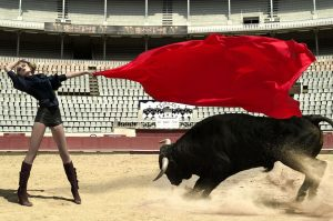 Life of an Art Director is a Life of a Matador with Creative Bulls
